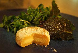 picodon i salata sa uljem od oraha